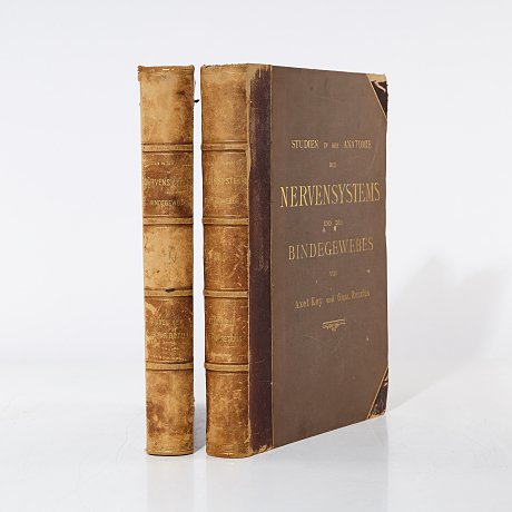 Anatomy of the nervous system 1875, 2 vol.